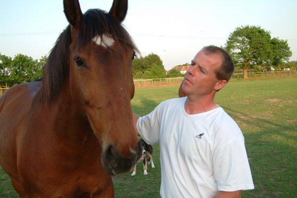 Chapelstone horse